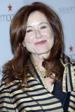 Mary Mcdonnell Zdjęcie Royalty Free