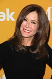 Mary McDonnell at the Women In Film Crystal + Lucy Awards 2012, Beverly Hilton Hotel, Beverly Hills, CA 06-12-12 Stock Photography