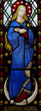 Mary, mother of Jesus in stained glass Stock Images