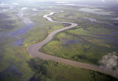 The Mary river royalty free stock image