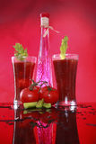 Mary sangrenta ou suco de tomate temperado Foto de Stock Royalty Free