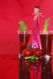 Mary sanguinante o succo di pomodoro aromatizzata fotografia stock libera da diritti