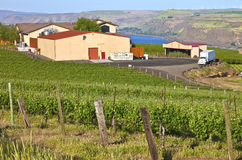 Maryhill winery Columbia River Gorge. Stock Photography