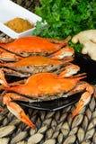 Maryland-blaue Befestigungsklammern Gedämpfte Krabben Krabbe Fest Stockfoto