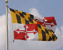 Maryland Flag. On Nice Day Stock Image