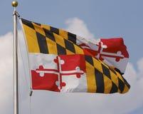 Maryland-Markierungsfahne Stockbild
