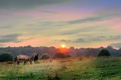 Maryland Pastures Royalty Free Stock Image