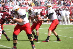 Maryland Quarterback # 11 Perry Hills Stock Images