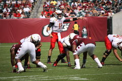 Maryland Quarterback nr. 11 Perry kullar Arkivfoton