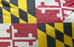 Maryland State Flag. A close-up of the Maryland State Flag waving in the wind Royalty Free Stock Images
