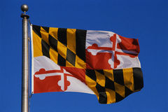 Maryland State flag. This is the Maryland State Flag flying on a flagpole against a blue sky. The flag has black and white checks with its symbol in the center royalty free stock photography