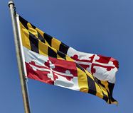 Maryland State Flag on Flag Pole Stock Images