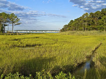 Maryland Wetland. A wide view of wetlands near Ocean City in Maryland Stock Photos