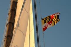 Maryland-Zustandmarkierungsfahnenflugwesen hoch stockfotografie