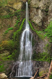 Marymere falls. In the Olympic National park in humid summer Stock Photo
