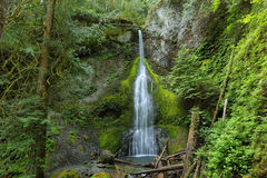 Marymere Falls, Olympic National Park Stock Photo