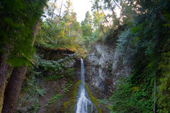 Marymere Falls. In the Olympic National Park, WA state Royalty Free Stock Images