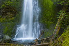 Marymere Falls Olympic National Park Washington state stock image