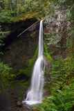 Marymere Falls in Pacific Rainforest near Lake Crescent, Olympic National Park, Washington. Marymere Falls is a beautiful waterfall hidden in the lush Pacific royalty free stock photos