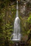 Marymere nedgångar lokaliseras i olympisk nationalpark nära sjöhalvmånformig i Washington, Förenta staterna royaltyfri foto