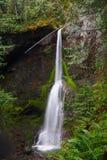 Marymere Spada w Pacyficznym tropikalnym lesie deszczowym blisko Jeziornej półksiężyc, Olimpijski park narodowy, Waszyngton zdjęcia royalty free