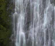Marymere spadki, Olimpijski park narodowy, Waszyngton obrazy stock