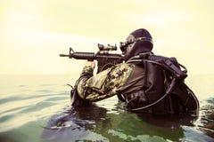 Marynarki wojennej foki płetwonurek obrazy stock
