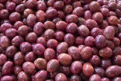 Marynowane oliwki w rynku Obrazy Stock