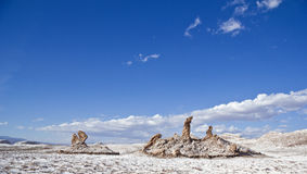 marys月亮结构树谷 免版税图库摄影