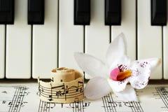 Marzec 28, 2018 Izhevsk, Rosja Muzykalne notatki, pianino Orchidea Fotografia Royalty Free