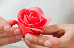 Marzipan flower. Chef make nice marzipan rose flower with hand royalty free stock images