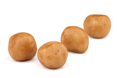 Marzipan potatoes Stock Images