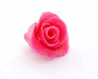 Marzipan rose Royalty Free Stock Photography