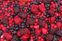 Marznąć mieszane jagody jako tło Czarne jagody, malinek czarne jagody i porzeczkowy morwowy tekstura wzór, Zdjęcie Royalty Free