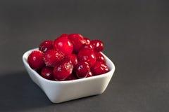 Marznący Cranberry Zdjęcie Stock