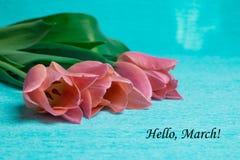 Marzo dell'etichetta ciao con tre tulipani rosa Immagine Stock