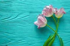 8 marzo, giorno del ` s della madre, tulipani su fondo blu Immagini Stock Libere da Diritti