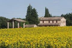 Marzo (Italia) - modific il terrenoare all'estate Immagine Stock