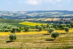 Marzo (Italia), paesaggio Fotografia Stock Libera da Diritti