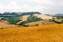 Marzo (Italia) - paesaggio ad estate Fotografia Stock Libera da Diritti