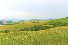 Marzo (Italia) - paesaggio ad estate Immagini Stock Libere da Diritti