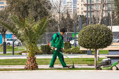 15 marzo 2017 parco di spiaggia, Bacu, Azerbaigian Prodotti dei giardinieri che fanno il giardinaggio nel parco della città Fotografie Stock