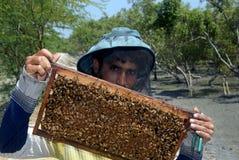 Fabricación de la miel Fotos de archivo libres de regalías