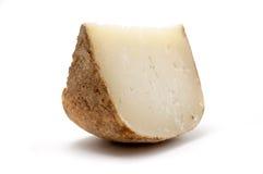 Marzolino乳酪 库存照片