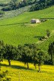 Marzos (Italia), paisaje Fotografía de archivo
