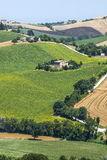 Marzos (Italia) - paisaje Imagen de archivo