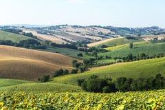 Marzos (Italia): paisaje del verano Fotos de archivo libres de regalías
