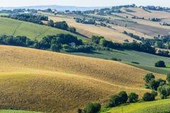 Marzos (Italia): paisaje del verano Foto de archivo libre de regalías