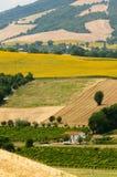 Marzos (Italia) - paisaje en el verano Foto de archivo libre de regalías