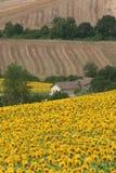 Marzos (Italia), paisaje en el verano Imágenes de archivo libres de regalías